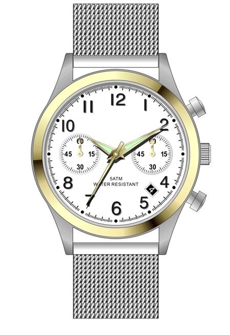 GCS13014 Steel Watch